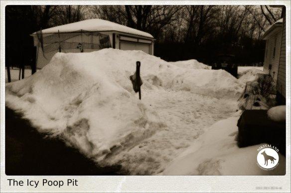 THE POOP PIT